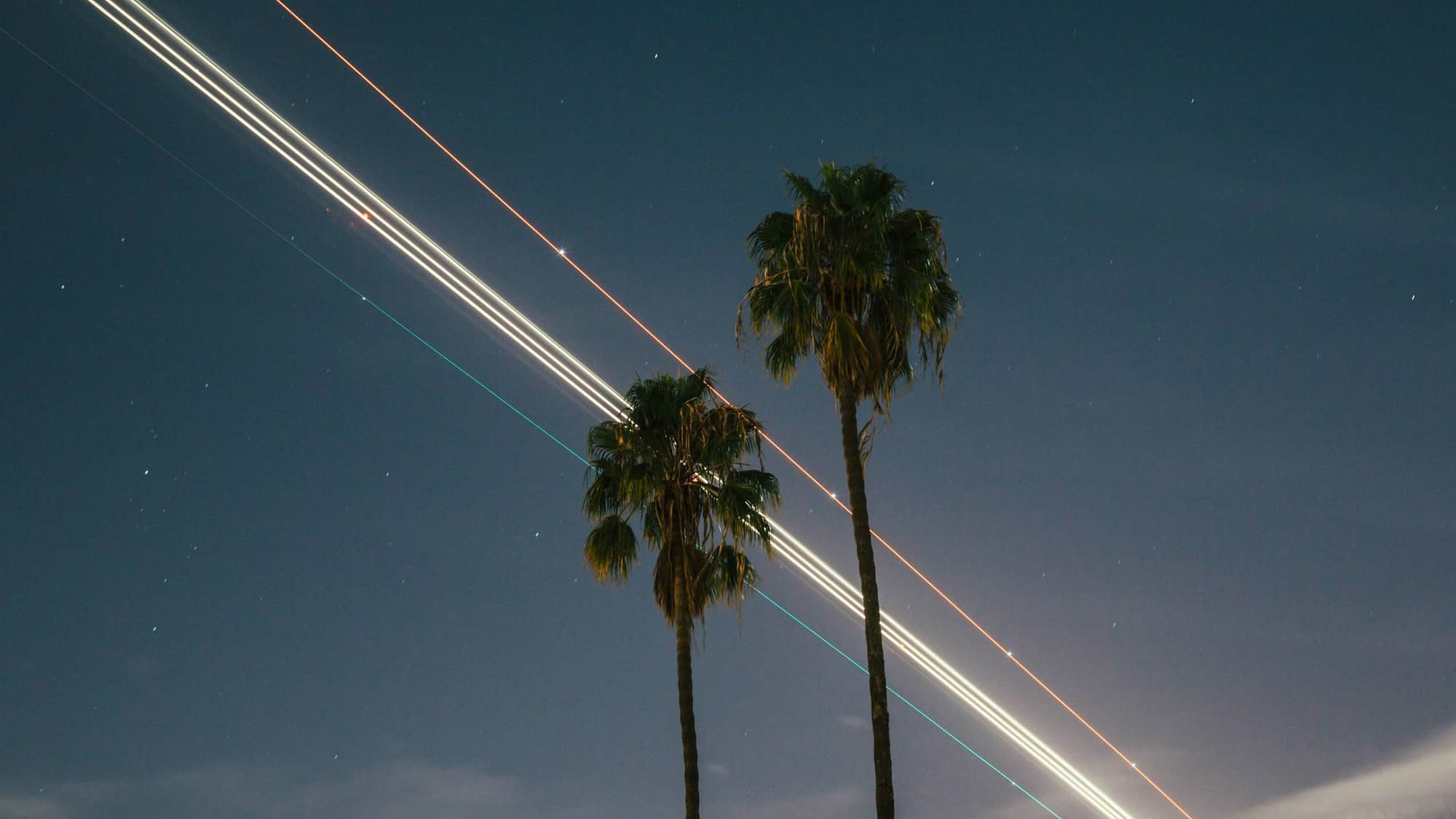 LAX during night with plane light long exposure + palm trees