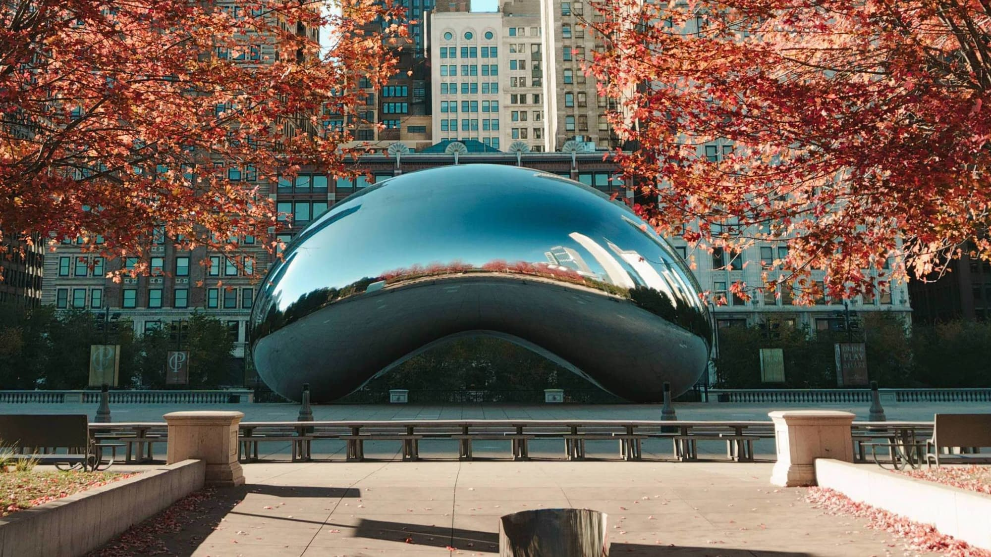 A picture of the famous bean from Chicago