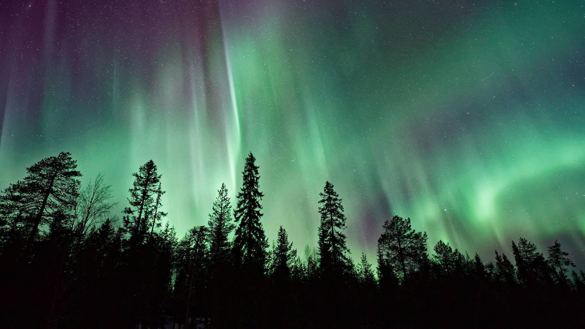 A nature shot of the Auora Borealis in Iceland.